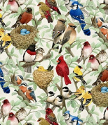 Elizabeth's Studio Beautiful Birds Quilt Fabric By The Yard