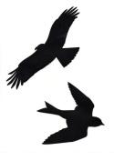 Bird Silhouette Window Stickers