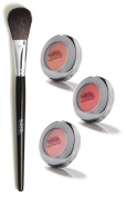 Best Blush Kit for All Skin Tones by Celebrity Makeup Artist - Alexis Vogel Make My Mood Kit - Includes Professional Blush Brush and 3 Shades of Blush - Matches Any Makeup Look for Any Occasion - Long Lasting Colour and Flawless Application