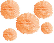 HoHoDeal Set of 5 Mixed 36cm and 25cm Peach Party Tissue Paper Pom Poms Wedding Reception Bridal Shower Party Nursery Baby Room Decoration