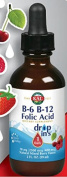 B6 B12 Folic Acid DropIns Mixed Berry 60mls
