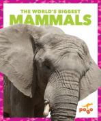 The World's Biggest Mammals