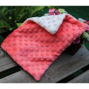 WOM-HOPE® 32cm x 50cm - Double-sided Bi-colour Soft Reversible Minky Dot Baby Pillowcase Toddler Pillowcase Children's Pillowcases Nursery Pillowcases Travel Bedding No Ruffle