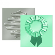 American Crafts We R Memory Keepers Next Level Embossing Folder, Ribbon