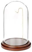 Plymor Brand Glass Doll Dome with Walnut Base with Brass Wire - 10cm x 18cm
