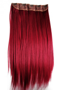 PRETTYSHOP 60cm Clip In Hair Extensions One Piece Full Head Hairpiece Straight Heat-Resisting