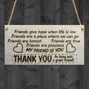 Red Ocean Friends Give Hope When Life Is Low, Friends Are A Place Where We Can Go, Friend Are Honest, Friends Are True, Friends Are Precious, My Friend Is You THANK YOU For Being Such A Great Friend Wooden Plaque Friendship Sign Funny Novelty Gift FRIEND