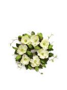 Melrose International Cream Magnolia Wreath, 70cm