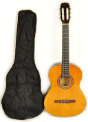 Class Kit 1 NA Full Size Acoustic Guitar w with Free Carry Bag