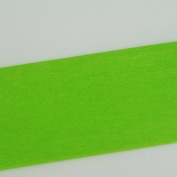 Crepe Paper Light Green 10 Art Project Tissue Paper Flower Crepe Paper