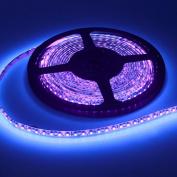 Joygo 5m 12V 3528 Waterproof 600 UV Ultraviolet LED Black Lights Night Fishing Strip Lamp