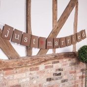 Just My Type Bunting-Just Married 3M