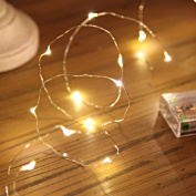 20 LED Micro Silver Wire Indoor Battery Operated Fairy String Lights by Festive Lights