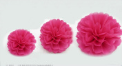 Kubert® [12-pack] High Quality Mixed Sizes Hot Pink Party Tissue Paper Flower Pom Poms Pompoms Wedding Birthday Bridal Shower Party Favour Decoration - Crafts Pom Poms, Tissue Paper Flowers for Weddings, Birthday Parties, Bridal Showers, Baby Sh ..