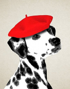 Animal Picture Print,Spotted Dog With Red Hat Wall Art And Home Decoration,Canvas Art Print On Canvas,Unstretched And Unframed Size:20cm x 25cm