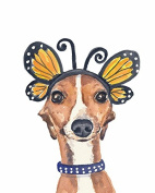 Animal Picture Print,Dog With Butterfly Wall Art And Home Decoration,Canvas Art Print On Canvas,Unstretched And Unframed Size:20cm x 25cm