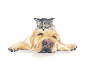 Animal Picture Print,Dog With Cat Wall Art And Home Decoration,Canvas Art Print On Canvas,Unstretched And Unframed Size:20cm x 25cm