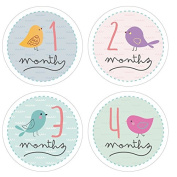 Pinkie Penguin Baby Monthly Stickers - Birds - Milestone Onesie Stickers - 1-12 Months