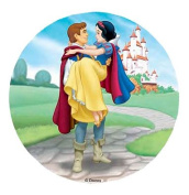 ~DISNEY SNOW WHITE CAKE TOPPER 20.5 CM EDIBLE WAFER / RICE I. PAPER CUP CAKE DECORATION TOPPERS BIRTHDAY PARTY KIDS WEDDING