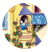 ~DISNEY SNOW WHITE CAKE TOPPER 20.5 CM EDIBLE WAFER / RICE II. PAPER CUP CAKE DECORATION TOPPERS BIRTHDAY PARTY KIDS WEDDING
