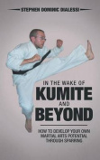 In the Wake of Kumite and Beyond
