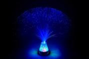 Fibre Optic Starlight Lamp