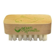 Wholesale Green Sprouts Nail Brush, [Baby & Children, Childrens Clothing]