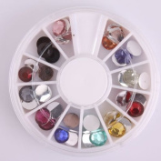 Vip Beauty Shop 3d Nail Art Wheels 12 Colours Glitter DIY Decorations