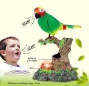 PowerTRC® Talking Parrot