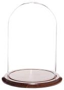 Plymor Brand Glass Doll Dome with Walnut Base - 25cm x 38cm