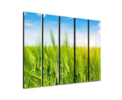Summer Field cereals 5 x 30 x 120 CM XXL extra Large 5-Piece Picture on Canvas and Stretcher Frame, Ready to Hang-Our Images on Canvas captivate with their unusual formats and extremely detailed print from up to 100 photos Mega Pixel High Resolution