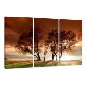 Visario 1025 Canvas Picture 160 x 90 cm Nature 3 Parts
