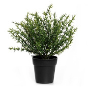 18cm Artificial Potted Thyme Plant - Plastic Ornamental Herb Plant