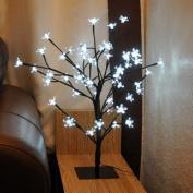 80cm Christmas White Blossom Light Up Bonsai Tree Table Decoration Festive Indoor Outdoor