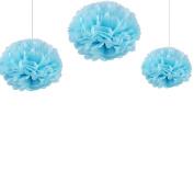 Joinwin® 12PCS Mixed Sizes Aqua blue Tissue Paper Flower Pom Poms Pompoms Wedding Birthday Party Nursery Decoration