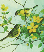 Greek Art Paint By Number,Flowers and Birds,41cm -by-50cm