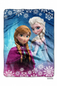 "The Northwest Company Disney's Frozen ""Frozen Land"" 150cm by 200cm Plush Raschel Throw Blanket, Twin"