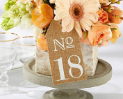 Kate Aspen Burlap Table Numbers