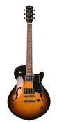 Godin Guitars Semi-Hollow Body Electric Guitar
