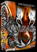 Animal Vector Clip Art - Great for decals and shirts