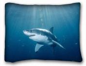 Decorative Standard Pillow Case Animals Great White Shark 50cm *70cm One Side