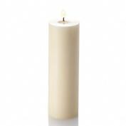 Richland® 5.1cm x 15cm Pillar Candles Ivory Unscented Set of 20