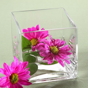 Hosley's 10cm Square Glass Cube