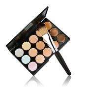 Fashion Base New 15 Colours Contour Face Cream Makeup Concealer Palette + Powder Brush