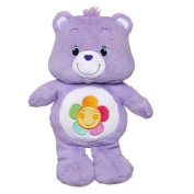Hasbro - Carebears - New 2014 Edition - Harmony Bear
