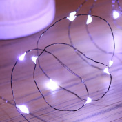 20 LED Battery Powered Micro Fairy Lights with Black Wire by Festive Lights