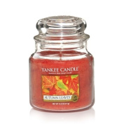 Yankee Candle Autumn Leaves Medium Jar Candle, Fresh Scent