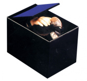 Halloween Magic Hand Black Box Money Trap Collectible Toy Piggy Bank Joke Gag Toy Prop