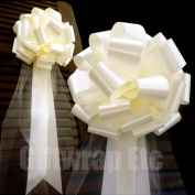 Ivory Wedding Pull Bows with Tulle Tails - 23cm Wide, Set of 6