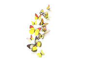 12PCS 3D Yellow Butterfly Stickers Card Making Stickers Wall Stickers 3D Crafts Butterflies